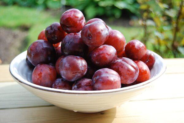 plum, bowl, fruit-2427588.jpg